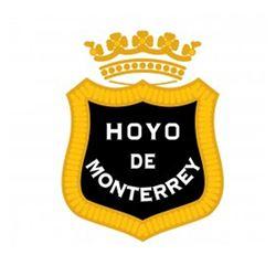 Hoyo De Monterrey cigar category