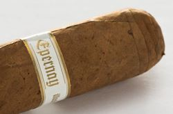 Picture for category Illusione Epernay Serie 2009